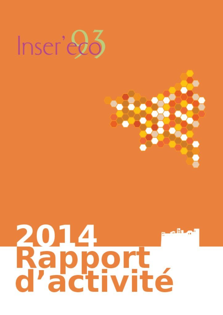 thumbnail of RapportActiviteInsereco2014_version_web